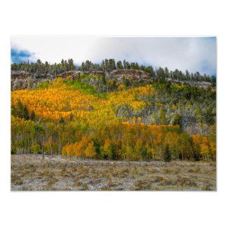 Colorado Color Art Photo