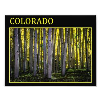 Colorado Color Photographic Print