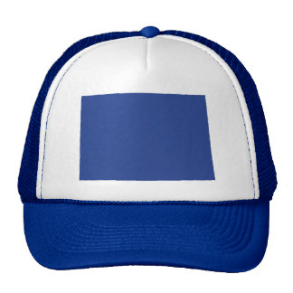 Colorado Cool Blue Snap Back Mesh Trucker Hat