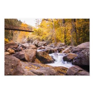Colorado Fall Bridge Photo