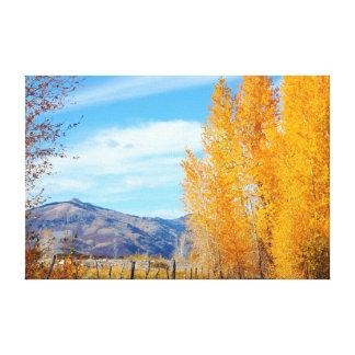 Colorado Fall Vista Wrapped Canvas Gallery Wrap Canvas