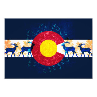 Colorado flag nature art scenery poster photographic print