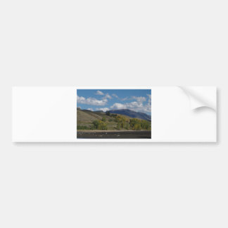 Colorado Mountain Fall Scene Bumper Sticker