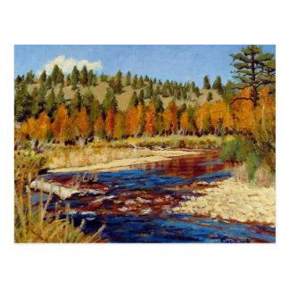 Colorado Mountain Stream Landscape Oil Painting Postcard