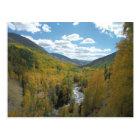 Colorado Paradise Postcard