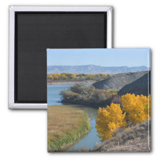 Colorado River in Autumn Magnet