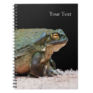 Colorado River Toad - Incilius alvarius Note Books