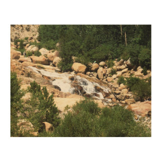 Colorado waters wood canvas