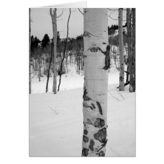 Colorado Winter Aspen Tree Card