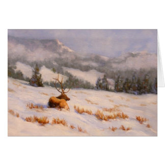 Colorado Winter Mountain Elk Card