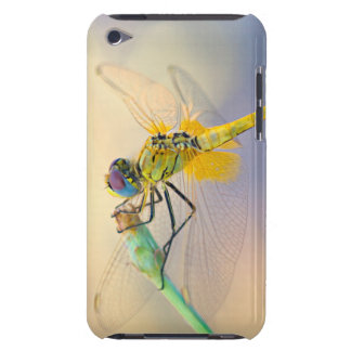 Colored Dragonfly iPod Case-Mate Cases