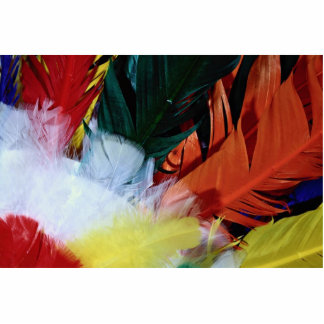 Colored feathers cut outs