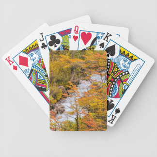 Colored Forest Landscape Scene, Patagonia Bicycle Playing Cards