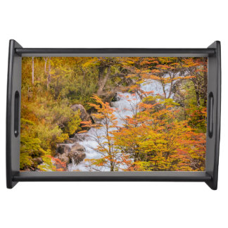 Colored Forest Landscape Scene, Patagonia Serving Tray