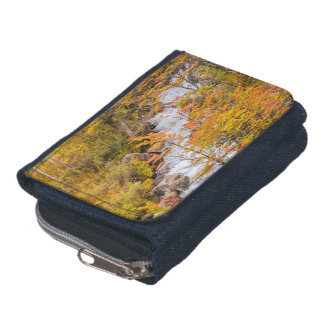 Colored Forest Landscape Scene, Patagonia Wallets