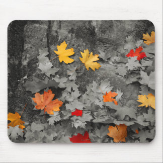 Colored Leaves in a Black and White World Mousepad