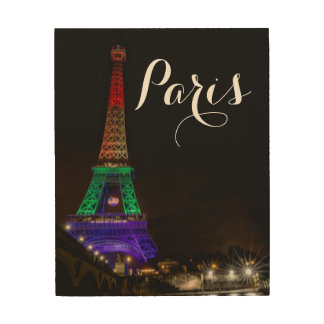 Colored Paris Eiffel Tower Typography Wood Canvas