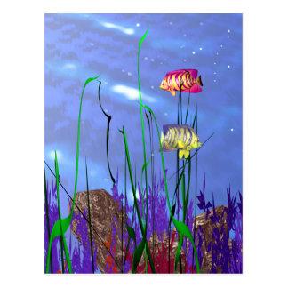 Colorful 3d Angelfish Postcard