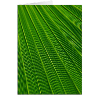 Colorful abstract green palm leaf card