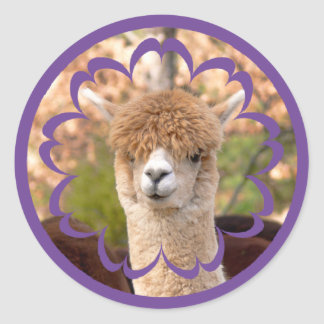 Colorful Alpaca Birthday Stickers