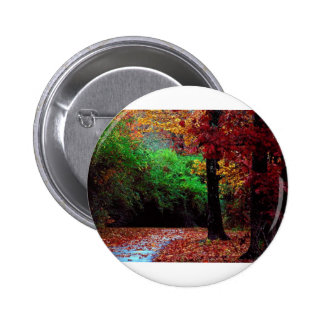 Colorful Autumn Day Pinback Buttons