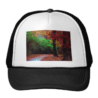 Colorful Autumn Day Hat