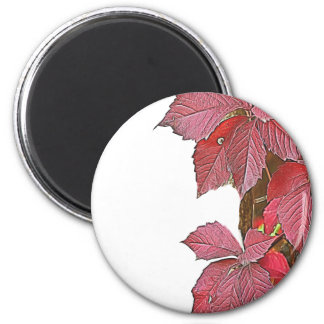 colorful autumn leaf magnet