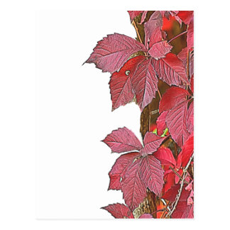 colorful autumn leaf postcard