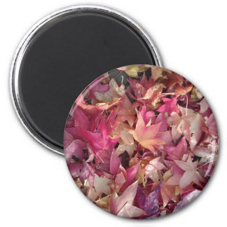 Colorful autumn leafs 6 cm round magnet