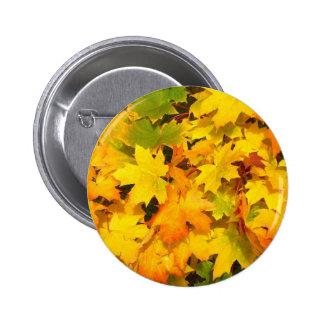 Colorful autumn leafs 6 cm round badge
