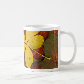 Colorful autumn leafs mug