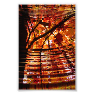 Colorful Autumn Leaves Reflected in Water Photo Print