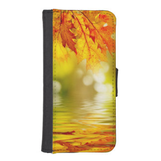 Colorful autumn leaves reflecting in the water 2
