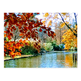 Colorful Autumn on the Water Postcard
