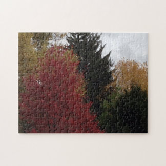 Colorful Autumn Trees Gray Sky Puzzles
