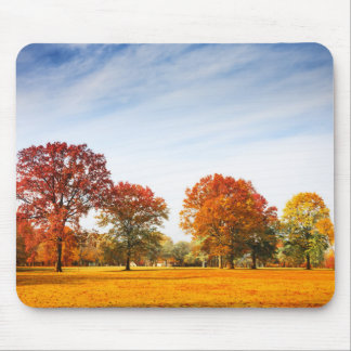 Colorful Autumn Trees Landscape Fall Season Mouse Pad