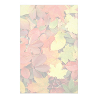 Colorful Background Of Fallen Autumn Leaves Stationery Paper