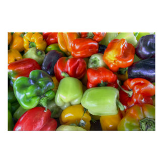Colorful Bell Peppers Print