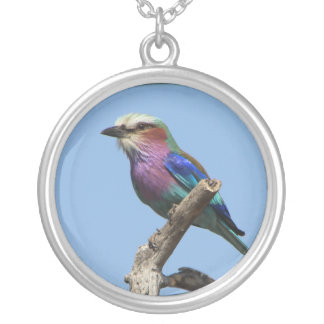 Colorful Bird Necklace