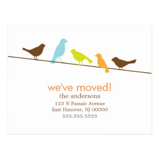 Colorful Birds On a Wire New Address Announcements Postcard