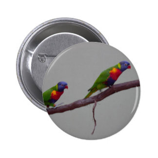 Colorful Birds Walking on a Branch Photo 6 Cm Round Badge