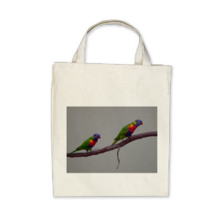 Colorful Birds Walking on a Branch Photo Bag