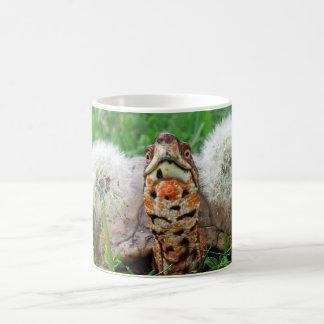 Colorful Box Turtle Coffee Mug