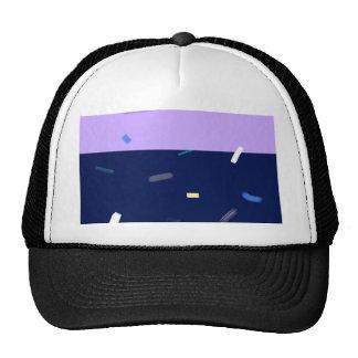 colorful brushes cap
