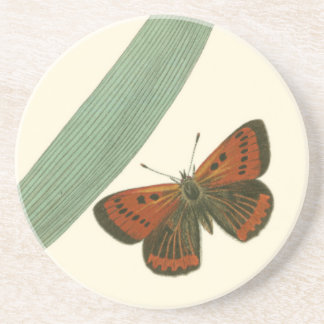 Colorful Butterflies Fluttering Around a Leaf Sandstone Coaster