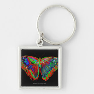 Colorful Butterfly design against black backdrop Silver-Colored Square Key Ring