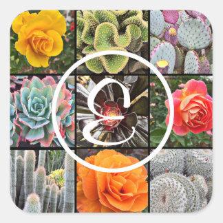 Colorful cacti and roses photo custom monogram square sticker