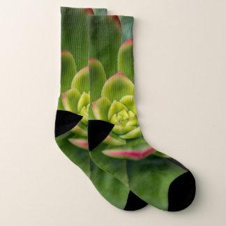 Colorful Cactus Close Up Photo Socks