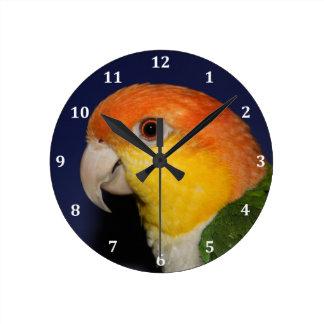 Colorful Caique Parrot Round Clock