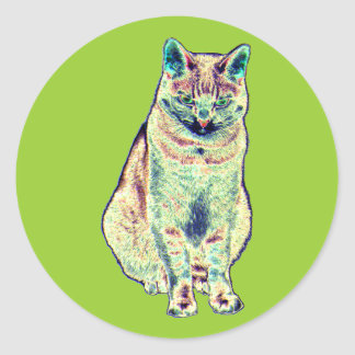 Colorful Cat Stickers